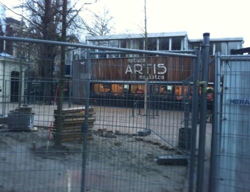 Artis Amsterdam Zandcement vloer